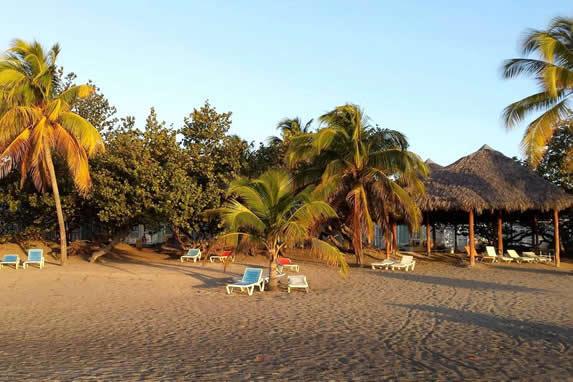 playa con tumbonas y palmeras al atardecer