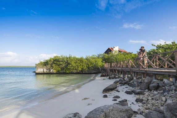 beach with white sand, rocks and vegetation