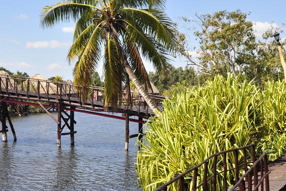 bridge system above the lagoon