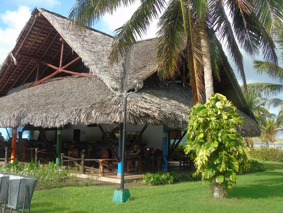 guano roof restaurant surrounded by palm trees
