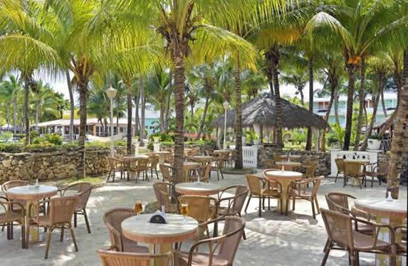 snack bar con mobiliario de mimbre bajo palmeras