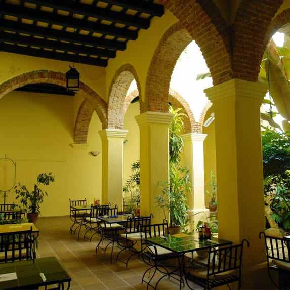 Interior terrace with ample vegetation
