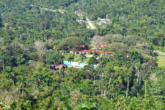aerial view of the hotel surrounded by greenery