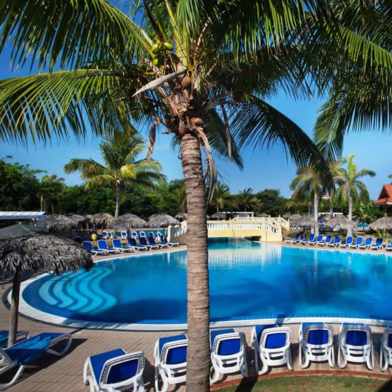Pool with palm trees at the hotel